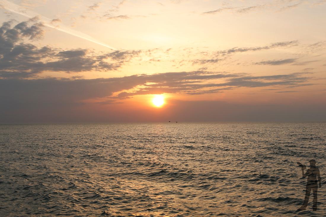 sunrisebirds_TK_0129tag