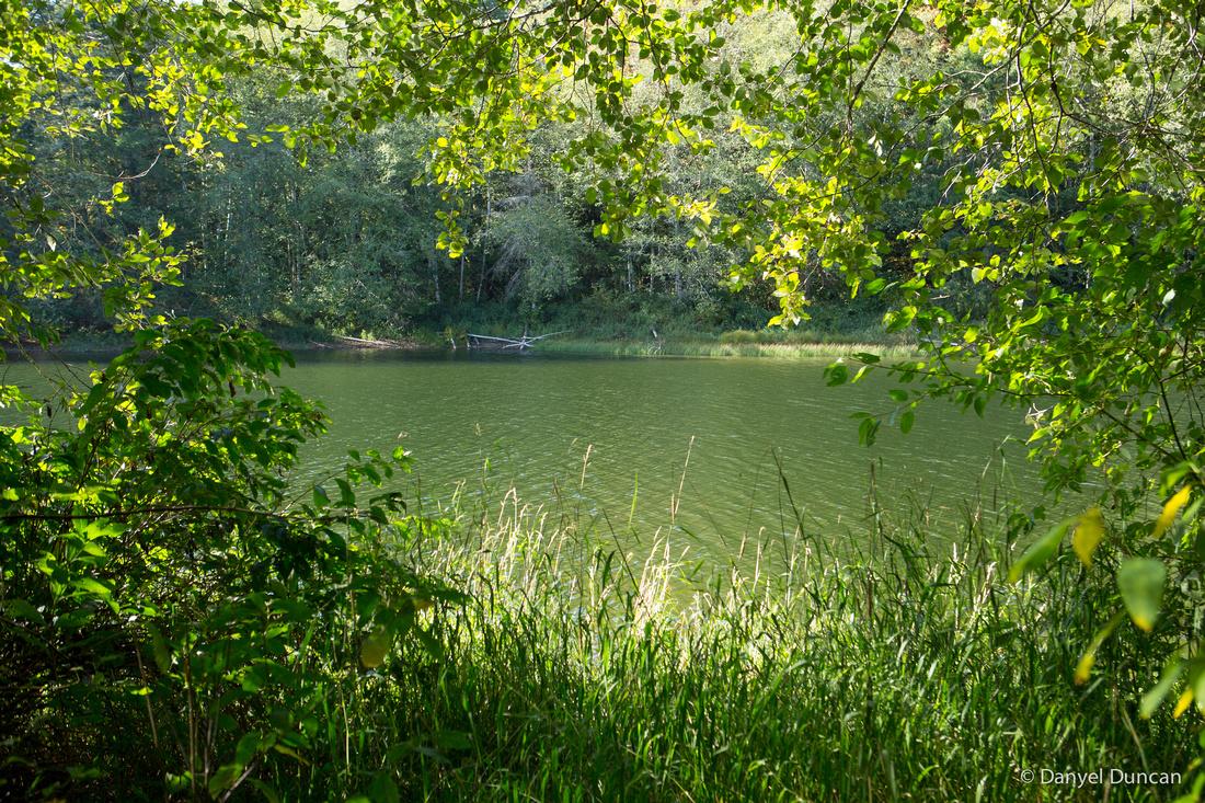 Washington-Lake-Tyee-Nature-Photography__MG_1590