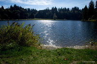 Washington-Lake-Tyee-Nature-Photography__MG_1596