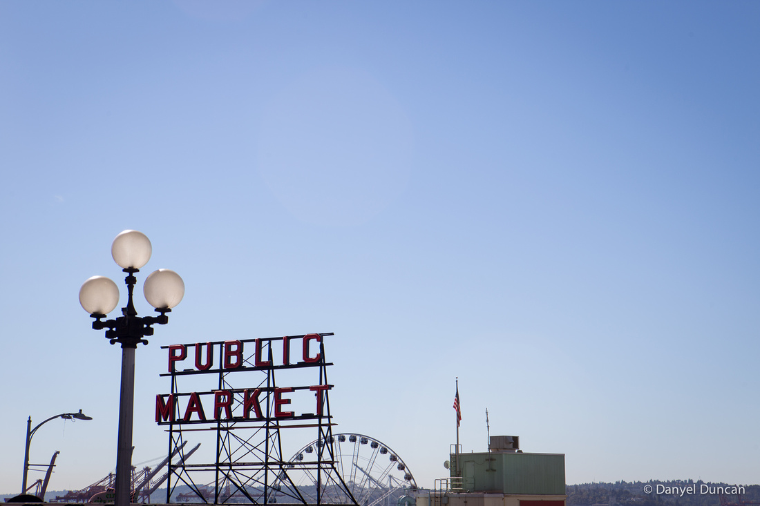 Seattle-Alki-Beach-Space-Needle-Pike-Place-Public-Market-Photography__MG_2055