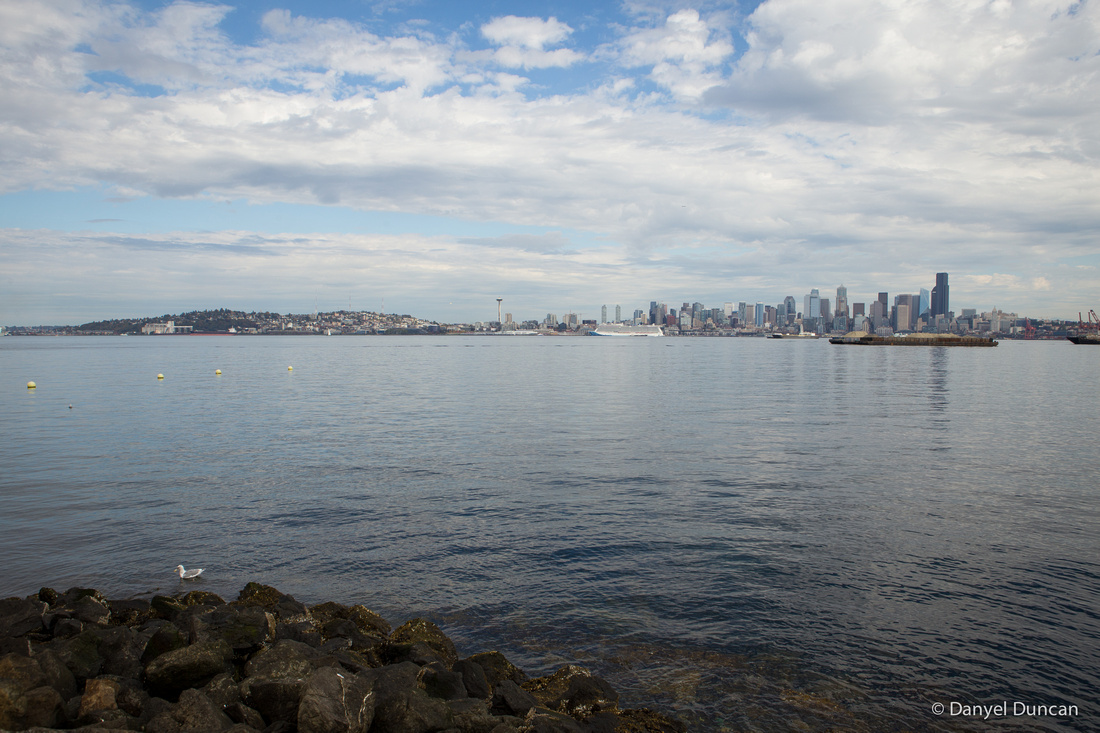 Seattle-Alki-Beach-Space-Needle-Pike-Place-Public-Market-Photography__MG_2290