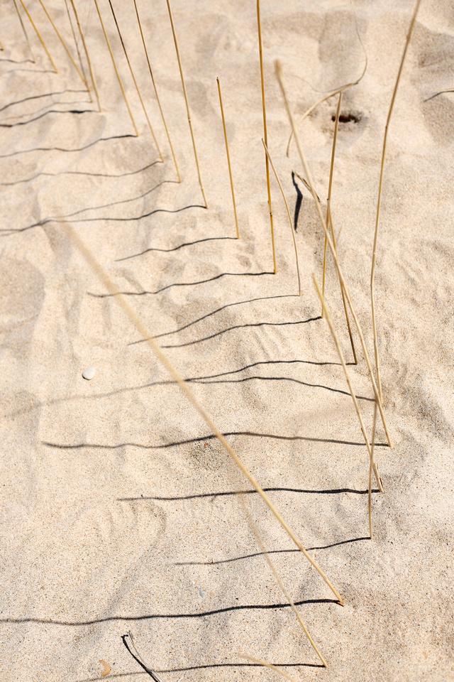 sandshadows